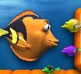 דג אוכל דג 3D