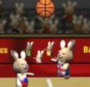 משחק כדורסל נחמד עם ארנבים, יש אפשרות ל2 שחקנים, נסו להכניס את הכדור לסל של היריב בעזרת קפיצות ונגיחות